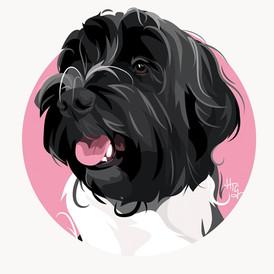 Contemporary Circle Pet Portrait