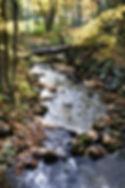 Silent Lake creek.jpg