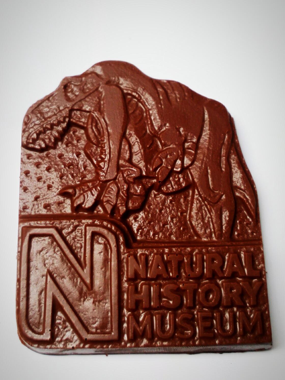 chocolat__dinosaur_bar_50gm_1