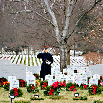 Army Bugler's Salute, Arlington Cemetery, December.  Photo by Tracey Attlee