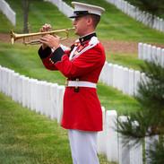 Taps, USMC Bugler, Arlington Cemetery, photo by Tracey Attlee