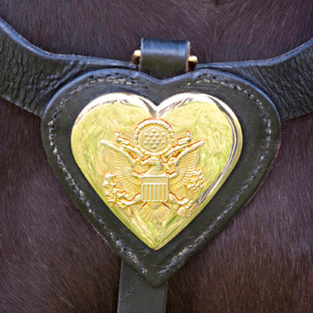 Caisson Horse's Emblem, Arlington Cemetery, photo by Tracey Attlee
