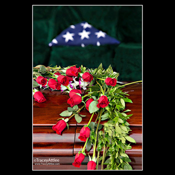 Red Roses, Flag and Casket at Arlington Cemetery, photo by Tracey Attlee