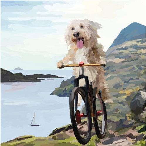 Dog on a Bike Greeting Card