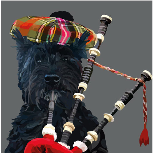 Scottie Dog with Bagpipes Greeting Card
