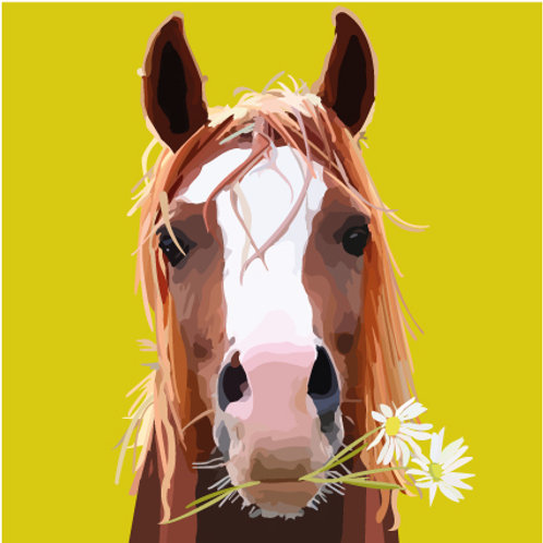 Daisy Horse Print