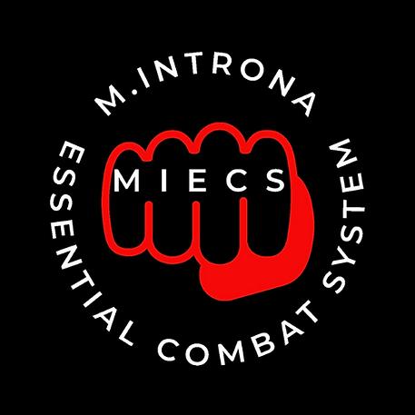 MIECS - Combat System