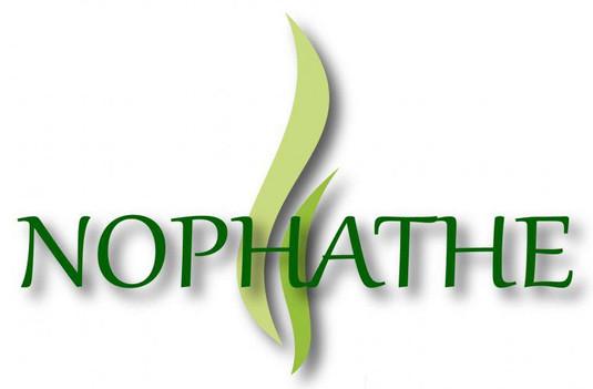 logo-final-nophathe-boite-transparent-fi