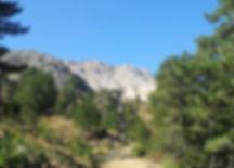 Der Paulusweg