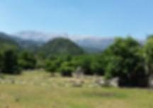 St. Paus trail