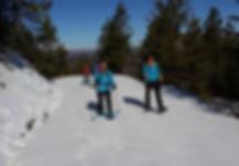 Snow shoe hiking St. Pauls trail