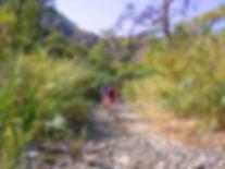 Mountainbike Lykischer Weg