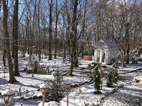 ガーデンの冬