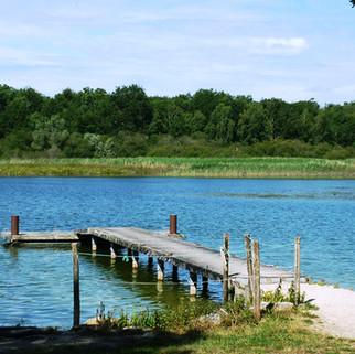 L' étang du puits