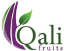 logo_qali.png