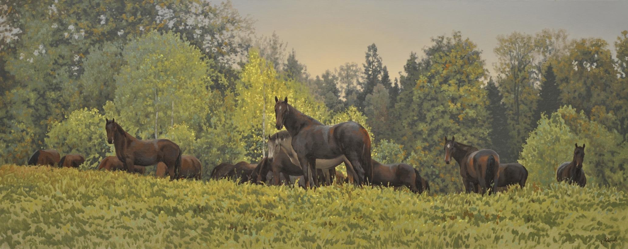 Дикие лошади у леса.JPG