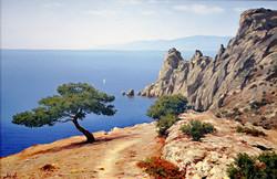 Дерево над морем.jpg