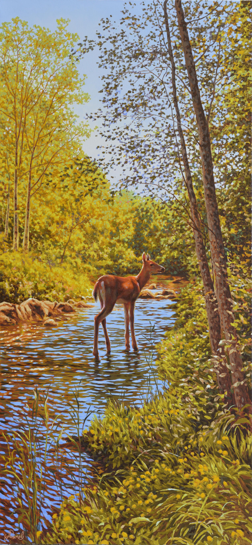 28.70х150 Лесной ручей-