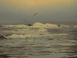 Парящая над волнами.jpg