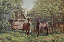 Кони в Поленово.jpg
