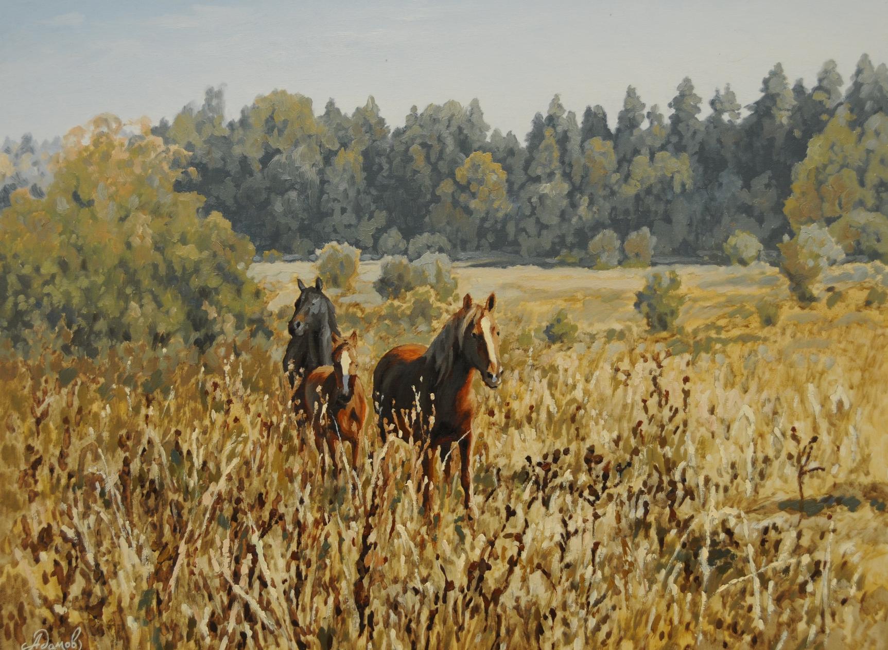 Кони в поле.jpg