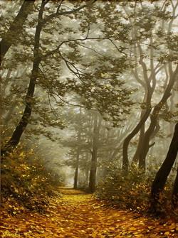 Осенняя аллея.jpg