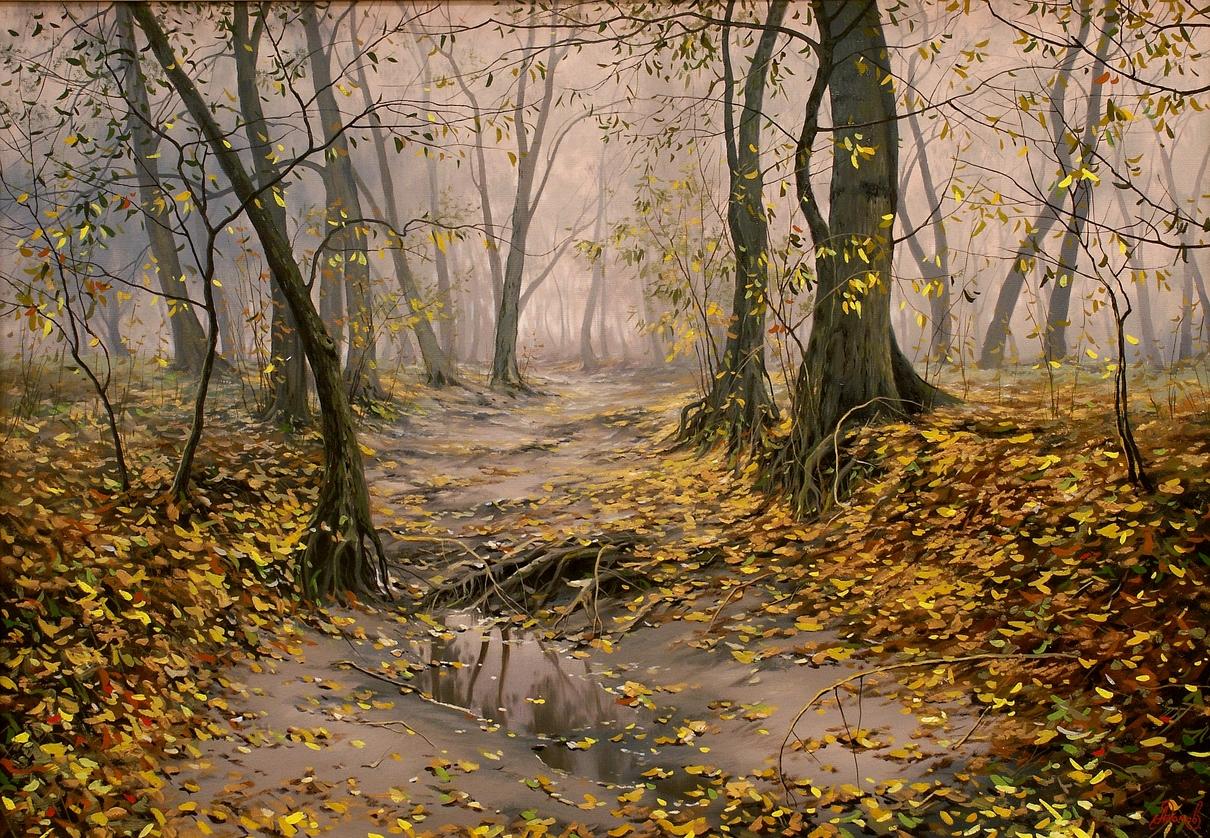 Старый лес.jpg