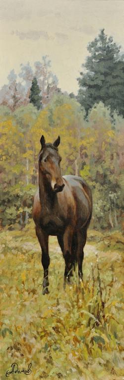 Этюд с лошадью.jpg