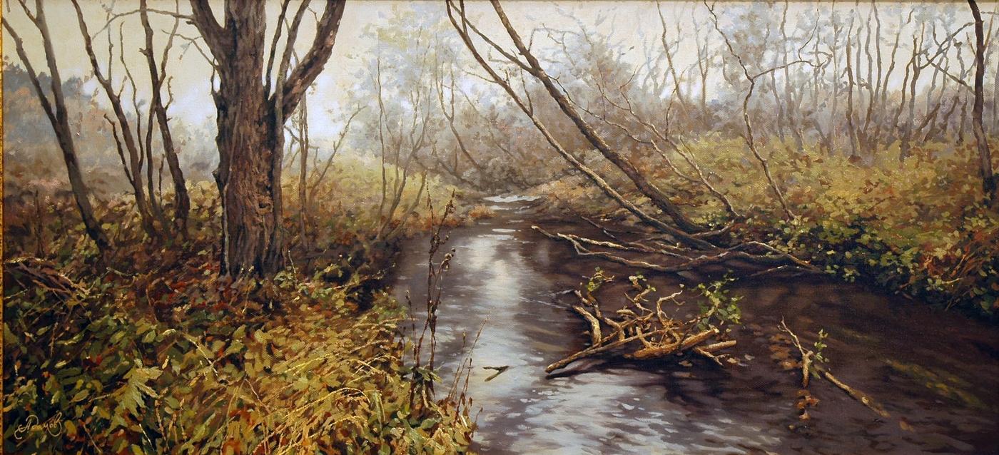 Мелкая река.jpg