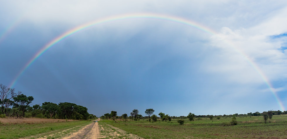RainbowNhoma.jpg