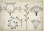 Abstraction of botanical forms from Dres