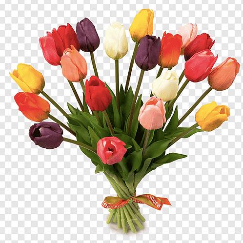 Flor Tulipan ×1  63Cm 3282