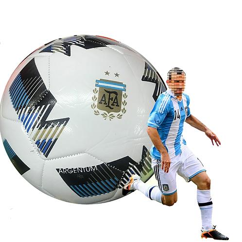 Pelota De Futbol N5 Afa Argentum