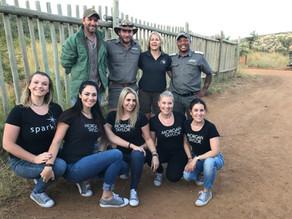 Morgan Taylor, Gelish & Sparkle support anti rhino-poaching initiative