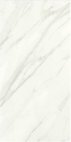 Florentine 12x24 Porcelain Tile