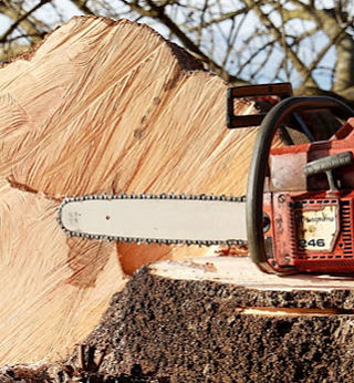 Chain saw_cropped.jpg