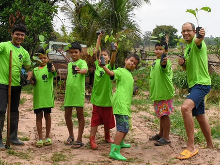 Tree planting in Thailand (Surin), a statistical analysis about mortality rate