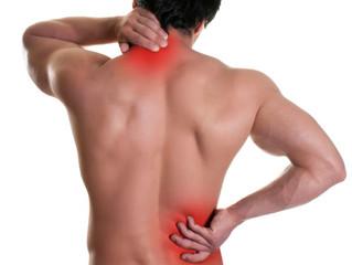 Muskelterapeut: Hva er det??