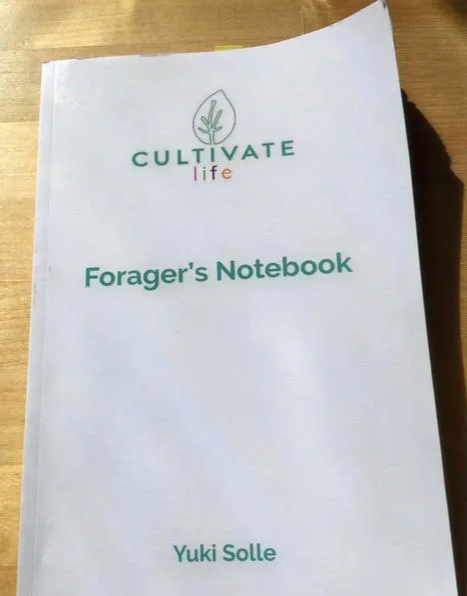 Foragers%20Notebook_edited.png