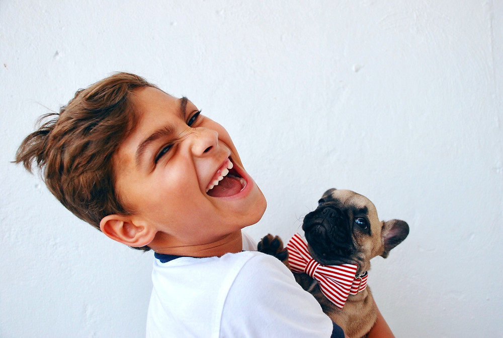 A boy holds a small Pug puppy