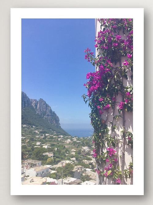 Capri View No.1