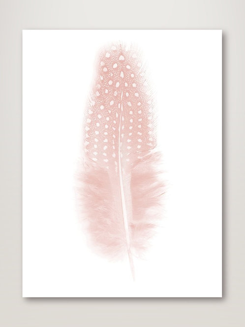 Quill Blush Poster
