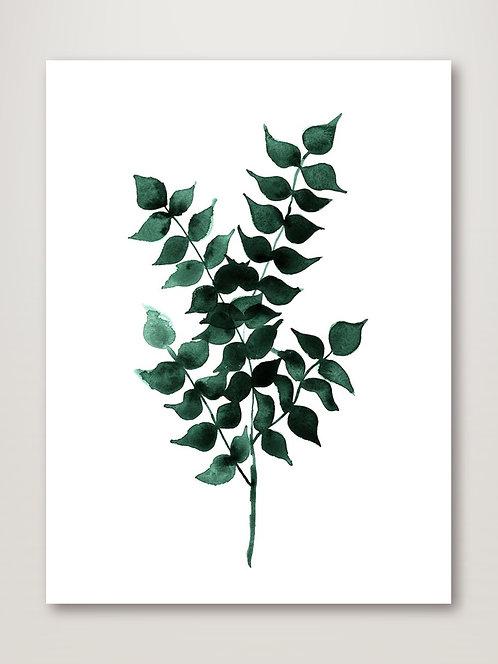 Cedar Green Poster
