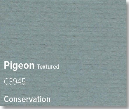 Pigeon - C3945