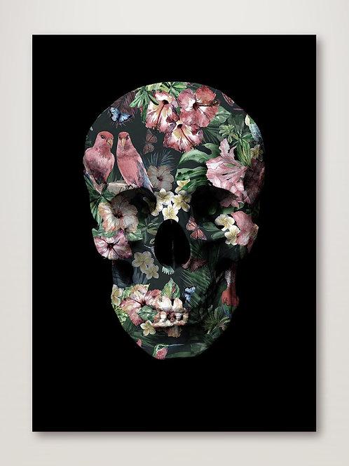 Tropic Skull