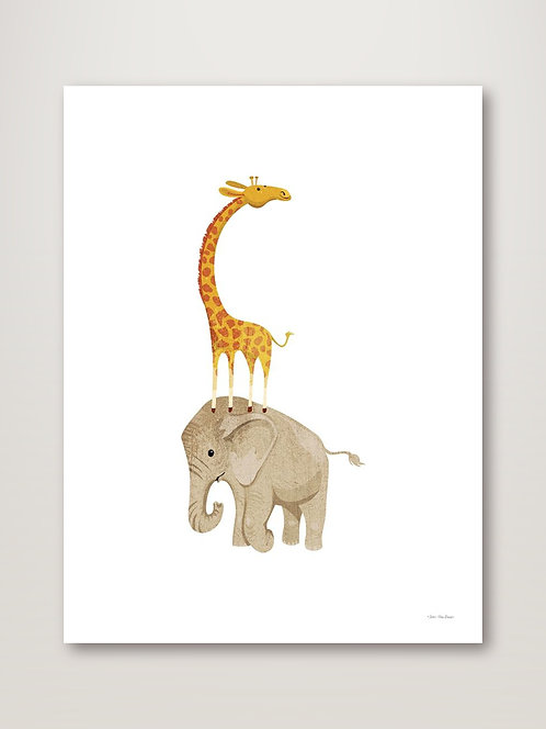 Safari Elephant and Giraffe