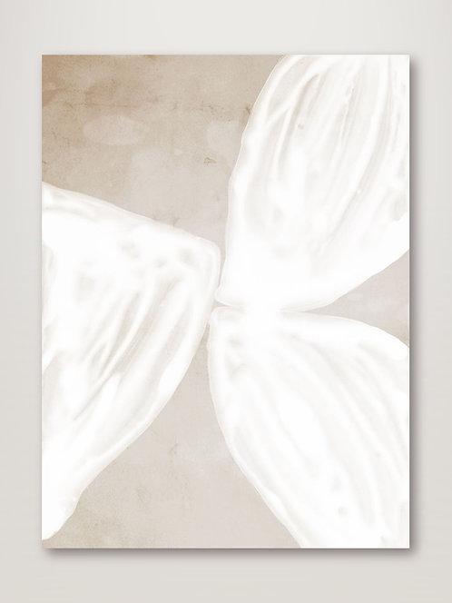 Blanc Spaces I