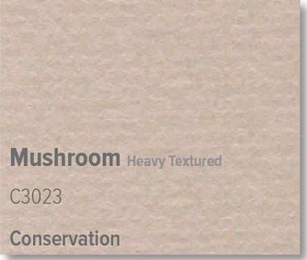 Mushroom - C3023