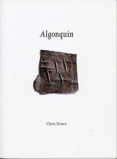Chris Drury - Algonquin