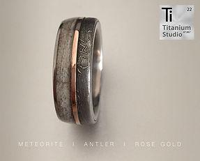 Titanium ring with meteorite, antler, ro